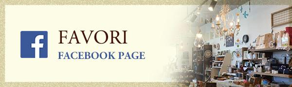FAVORI facebook